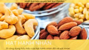 Công dụng của hạt hạnh nhân - Nutgarden