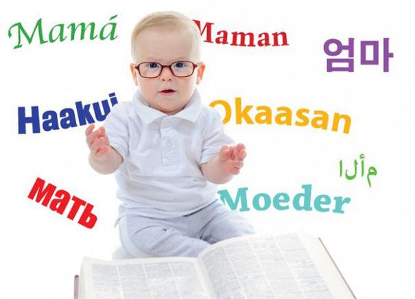hạt macca cải thiện não bộ cho bé